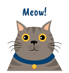 cute cartoon gray cat icon meow vector image