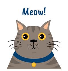 Cute cartoon gray cat icon meow vector