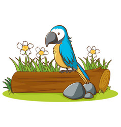 isolated picture blue parrot vector image
