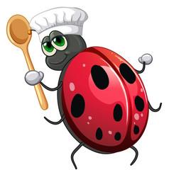 Ladybug chef cartoon character vector