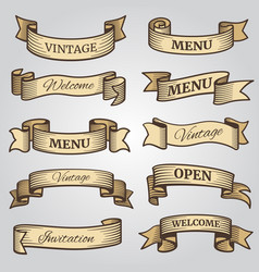 Vintage ribbon banners with engraved shadows vector