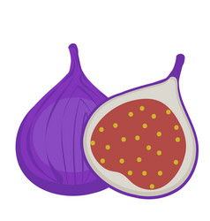 fresh figs icon flat cartoon styleisolated on vector image