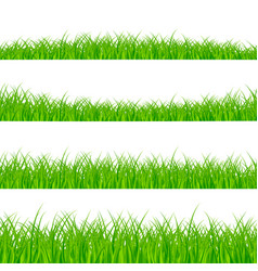grass borders set grass plant panorama grass vector image