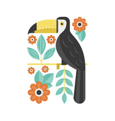 drawing of toucan vector image