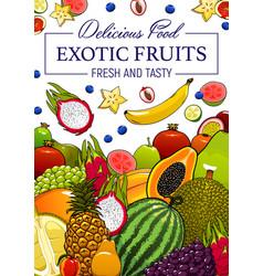 exotic tropical fruits cartoon poster vector image