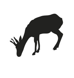 Gazelle drawing silhouette vector