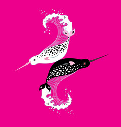 Graphics of narwhals vector