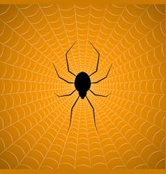 Halloween spider hanging web background vector