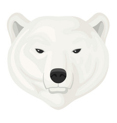 polar bear head icon wild snow animal vector image