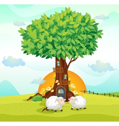 Sheeps under tree house vector image vector image