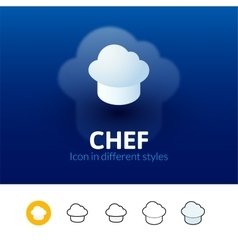 Chef icon in different style vector image