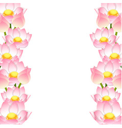 Indian lotus border vector