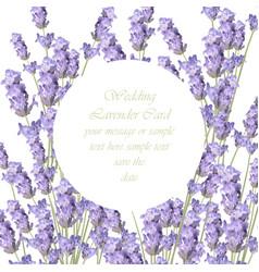 lavender delicate wreath card springtime summer vector image