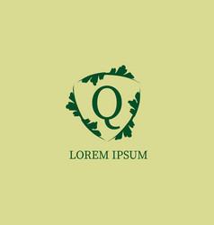 Letter q alphabetic logo design template vector