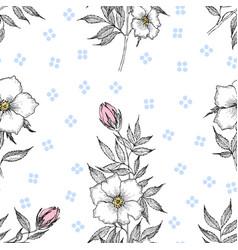 seamless pattern vintage botanical vector image