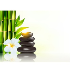 Spa background with bamboo and stones vector
