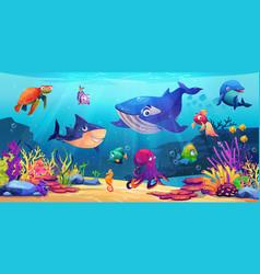 Underwater world marine life sea ocean animals vector