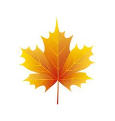 autumn golden yellow leaf logo vector image
