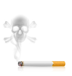 cigarette goriz vector image vector image