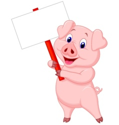 Pig cartoon holding blank sign vector image vector image
