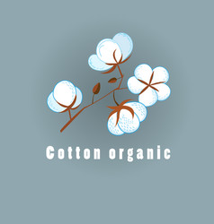 graphic of cotton organic vector image