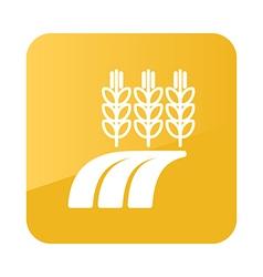 Ears Wheat Barley or Rye Field icon Farm vector