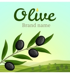 Olive label logo design Olive branch vector image vector image