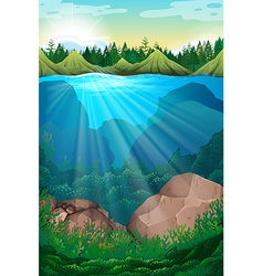 Scene with sea and underwater vector image