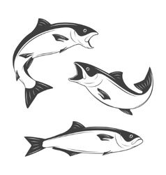 Set of monochrome fish vector