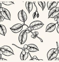 grains of coffee vector image vector image