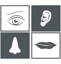 Nose eye mouth and ear pictograms vector image