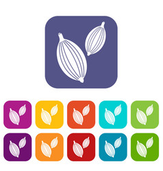 Cardamom pods icons set flat vector