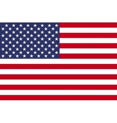 American flag image vector image