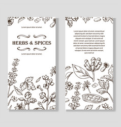 banner set with hand drawn elements herbs and vector image