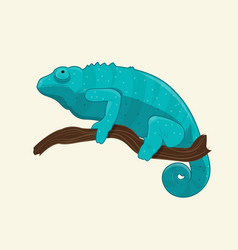 Blue chameleon on branch vector