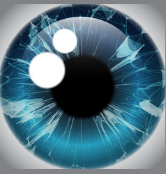 Human eye iris realistic eyeball icon vector
