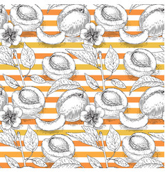 Seamless pattern with apricot and orange stripe vector