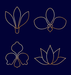 Set of flower line art on blue background vector