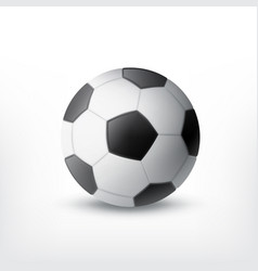 soccer ball isolated white vector image