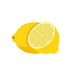 yellow lemon fruit fresh citrus juicy ripe food vector image