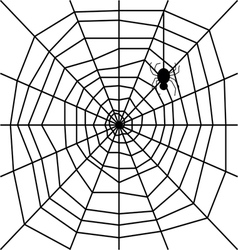 cobweb with spider silhouette vector image