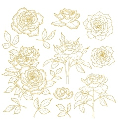 Set of one-colored outlined roses vector image