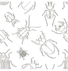 set of beetle pattern vector image
