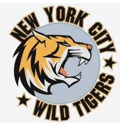 Angry Tiger Sport team emblem vector image vector image