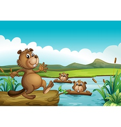 Beavers playing in the river with woods vector