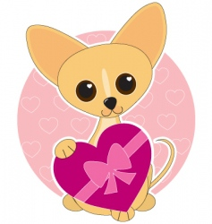 chihuahua heart theme vector image