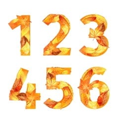 Font of autumn leaves number watercolor vector