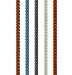 leather seamless braided plait vector image vector image