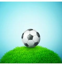 summer football vector image