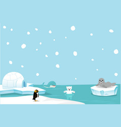 cute polar bear and whale background vector image